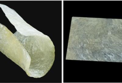 Steriflex Wrappable Bone Allografts